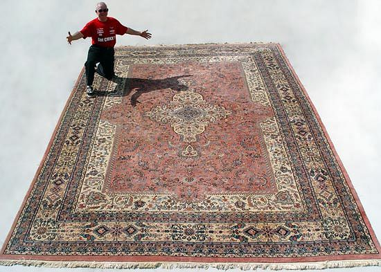 HAND TIED INDO PERSIAN CARPET: Approx. 17'