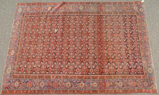 Oriental area rug (end borders missing).